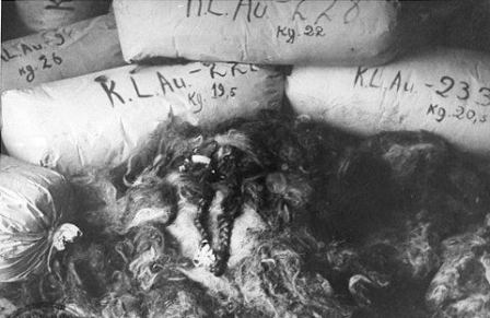 Female hair found in Auschwitz warehouses after liberation.  Image courtesy of Polish National Archives via fcit.usf.edu